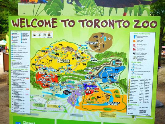 Toronto zoo map 2019